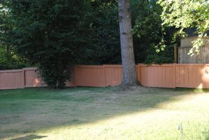 I am not loving how orange Aztec looks on the fence. It was much more brown in the store